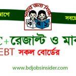 PSC Result 2019 (Primary School Certificate) –    www.dpe.gov.bd